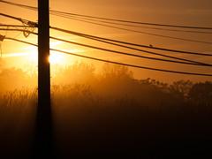 P1010310 (ArchitecturalAfterlife) Tags: sunset ohio summer orange mist green nature fog photography evening warm glow notcat johnnyjoo