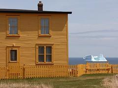 Newfoundland Backyard (Karen_Chappell) Tags: ocean house canada ice yellow fence newfoundland scenery scenic iceberg nfld avalonpeninsula ochrepitcove