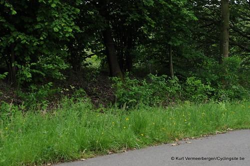 Nieuwrode 240514 (181)