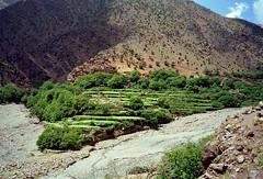 Timichi (ohank1951) Tags: morocco atlas marokko ourika oukameden hogeatlas timichi oukaimedene gletsjertong