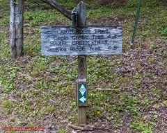 GSMNP Backpack Day 1 - June23, 2014- Hazel Creek Trail (mikerhicks) Tags: usa geotagged unitedstates hiking northcarolina backpacking proctor greatsmokymountainsnationalpark gsmnp fontanadam fontanavillage canon7d hazelcreektrail sigma18250mmf3563dcmacrooshsm geo:lat=3547381900 geo:lon=8372152500