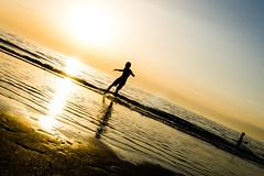 Skimboarding @ Zaandvoort Beach (vnkht) Tags: sunset sunlight black netherlands sunshine silhouette strand 35mm lumix evening raw dusk thenetherlands panasonic skimboarding zandvoort 2012 noordholland lightroom f63 nederlanden skimming northholland skimboarder iso80 zandvoortaanzee zandvoortbeach lx5 dmclx5 lightroom5 gavinkwhite