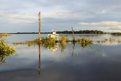 Reflections - Rio Negro (Amaznia) (Paulo Rezende Photography) Tags: brazil am bra balsa agata saude moura hcamp fotopaulorezende agata4 operacaoagata4