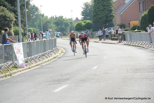 Geel Oosterlo  (325)
