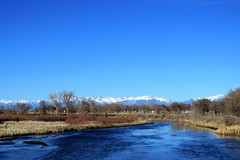 And the River is Wide (Patricia Henschen) Tags: alamosacolorado alamosa colorado riogrande riogranderiver river wetland mountains mountain sangredecristo blanca winter west western