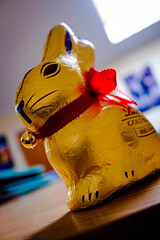 96/365 (efsb) Tags: 96365 project365 2017inphotos 2017yip chocolate present rabbit