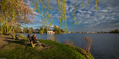 Lazy Sunday afternoons (Vagabundina) Tags: europe germany hamburg alster elbe river lake nature city cityscape waterscape landscape scenery nikon drsl nikond5300 weekend afternoon lazy sunday goldenhour sunset park tree flowers