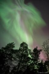 DSC_5360-Edit.jpg (marius.vochin) Tags: lights night sky stockholm longexposure outdoor amasing northenlights
