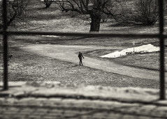 Walk in the Park (TomPhotoWorld) Tags: omdem1 75mm18 park
