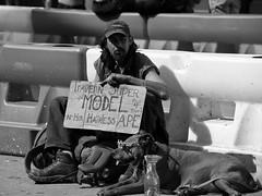 (namroff) Tags: sxsw sxsw2017 austin austintx atx street streetphotography candid people bw blackandwhite 6thstreet panhandler cardboardsign dog nateforman namroff nikon nikond810