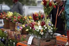 Scenes from the market. 💗 (Tonya Faye) Tags: bloomington farmersmarket market local flowers bouquet canon 6d fullframe 85mm 18 prime