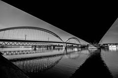 Les trois ponts (Fender !) Tags: france alsace bas rhin strasbourg kehl allemagne canon 1200d pont de leurope tram train voiture auto bateau bridge brücke