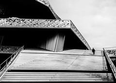 Philharmony (Voyen_Ras) Tags: architecture life people white blackwhite explore create philharmonic paris lavillette outdoor light clean stairs city urban planning modern art freedom portrait symmetric lines street
