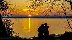 sunset lovin' (lvphotos!) Tags: people sun sunset beautiful light twilight evening enjoying love watching river water nature outdoor silhouette golden color tree framing