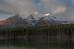 Herbert Lake (jim peterson2012) Tags: canadianrockies herbertlake banffnationalpark icefieldparkway kickinghorsepass