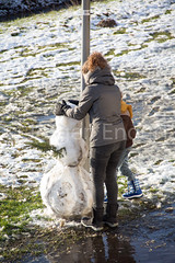 092-GrooteWielen_in_beeld.jpg (Endert Multimedia en Communicatie) Tags: grootewielen rosmalen sneeuwpop sneeuwpret