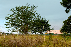 Allá a lo lejos (leograttoni) Tags: paisaje landscape campo countyside casa house árbol tree airelibre magdalena buenosaires