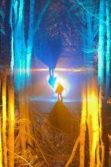 Serendipity (palateth) Tags: lightpainting lightart night belgique belgie belgium nophotoshop singleexposure sooc woods outdoor death rotation camerarotationtool crt kineticphotography
