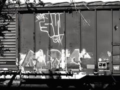 Train graffiti in Chickasha, Oklahoma (kevinellison62) Tags: graffiti trains chickasha oklahoma blackwhite streetart