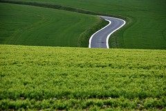 Road. (Steve.T.) Tags: road view fields landscape france millroadcemetery thiepval picardie picardy green abstract nikon d7200 sigma18200 countryside curve highway