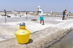 (sarathy.selvamani) Tags: salt pan life saltpan colour skies nikon 2017 pondicherry workers yellow blue people