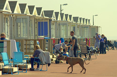 Beach huts at St Annes - 4 (Tony Worrall) Tags: north country place visit area county attraction open stream tour urban candid people person capture outside outdoors caught photo shoot shot picture captured picturesinthestreet photosofthestreet resort england english northwest town northern location lancs lancashire uk fylde fyldecoast stannes beach huts sunlit relax hut sunny holiday holidaytown beachhuts stannesbeachhuts