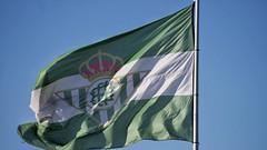 (M. Garre) Tags: betis bandera brenes soccer futbol football
