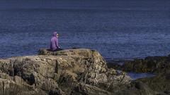 Sitting On The Rocks at the Beach (Linda Kosidlo) Tags: odc rocks ocean beach newhampshire atlanticocean
