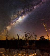 Milky Way over Harvey Dam, Western Australia (inefekt69) Tags: western australia great rift panorama stitched ms ice landscape wide clouds astrophotography astronomy stars galaxy milky way galactic core space night photography nikon d5100 dslr long exposure perth southern hemisphere cosmos cosmology outdoor sky harvey dam water reflections trees dead tree lightpollution 35mm milkyway westernaustralia landscapeastrophotography mosaic explore explored