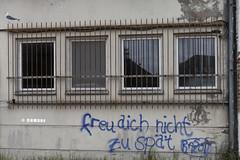 freu dich nicht zu spät (Ha La Lo - Rafael Cambre) Tags: zingst deustchland alemania stencil streetart graffiti reflejo reflex rejas gitter ventana fenster