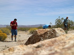 April 19, 2017 (69) (gaymay) Tags: california desert gay love riversidecounty joshuatreestatepark