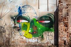 Samara face (Artogolizm only!) Tags: samara russiangraffiti adno artogolizm artoholism andreyadno samaragraffiti