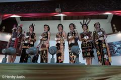 _NRY5330 (kalumbiyanarts colors) Tags: sabah cultural dayak murut murutdance kalimaran2104 murutcostume sabahnative
