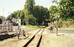'Molli' - Narrow Gauge Steam Train Juli 1990 Mecklenburg/DDR (willberghoff) Tags: ddr deutsche molli reichsbahn