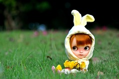 No eggs but chicks will do! *Lottie**