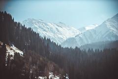 Almaty, Kazakhstan (boorulka) Tags: kazakhstan amtimes