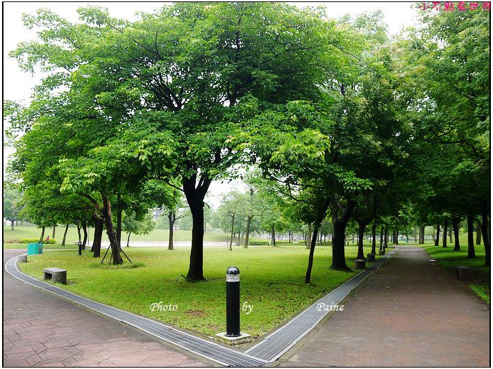 大溪埔頂公園 (16).JPG