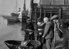 Anglų lietuvių žodynas. Žodis coracle reiškia n žvejų luotelis (supintas iš vytelių ir aptrauktas oda arba brezentu) lietuviškai.