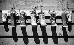 (Victoria Clowater) Tags: blackandwhite ontario canada wellies tobermory 2014 rainboots