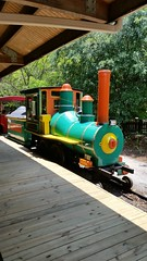 Train (amateur photography by michel) Tags: pictures park camera new trip railroad travel family flowers vacation people nature animals gardens train buildings photography zoo downtown day riverside florida photos pics stjohns images historic trail fotos transportation jacksonville fl jax duval stjohnsriver rivercity jacksonvillezoo firstcoast duvalcounty jacksonvillezooandgardens iwantjacksonville