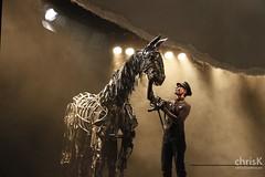Teatro (ckfis) Tags: horse berlin germany caballo deutschland alemania pferd tagderoffenentr theaterdeswestens warhorse opendoorday theaterstck gefhrten bhnenstck schicksalsgefhrten