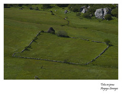 Teitu en prau (Argayu) Tags: verde nikon asturias somiedo asturies prau muria saliencia teitu nikond5000