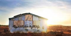 MYROOTS ARE MY WINGS * Pilbara Desert. West Australia.