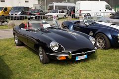 Jaguar E-Type 4.2 Roadster (Maurizio Boi) Tags: auto old classic car vintage automobile antique voiture oldtimer jaguar roadster vecchio etype voituresanciennes worldcars