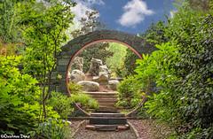 Nature's Portal