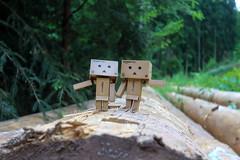 Waldspaziergang mit Danbo (Maxi 66) Tags: danbo danboard