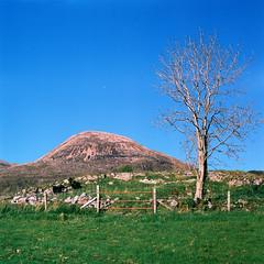 Hills (megalithicmatt) Tags: tree skye hill agfaoptima100 torrin kiev88cm