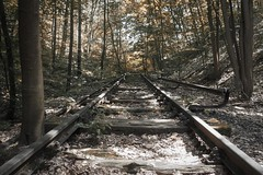 Abandoned Suburban Railway Line (2) (Lens Daemmi) Tags: berlin abandoned deutschland railway olympus sbahn wald brandenburg kleinmachnow stahnsdorf aufgegeben epl6