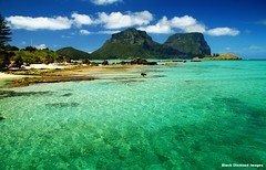View Across the Lagoon to Mt Lidgbird & Mt Gower From Lord Howe Island Wharf, NSW (Black Diamond Images) Tags: coral island paradise australia lagoon wharf nsw lordhoweisland worldheritagearea mtgower wharfprecinct mtlidgbird thelastparadise blackburnisland lordhoweislandwharf
