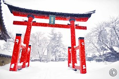Mid Winter at the temple.  Glenn E Waters. Japan 2014. Over 5,000 visits to this photo. (Glenn Waters in Japan.) Tags: winter snow japan temple japanese nikon shrine aomori  hirosaki   japon d800   japanesetemple   nikond800  glennwaters